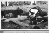 Drinking from an artesian well near Lakeland, Florida